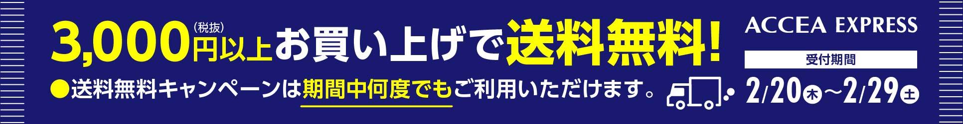 税別3000円以上お買い上げで送料無料!受付期間:2020年2月20日(木)~29日(土)